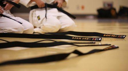 Karate tradycyjne – droga przez życie