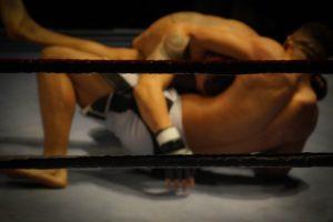 Popularność MMA w Polsce